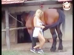Horse cums on kelly